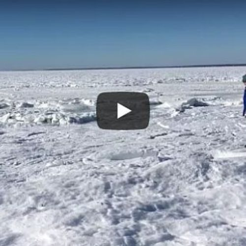 Van a la playa y encuentran el océano congelado